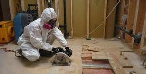 Water Damage Roseboro Mold Removal Process