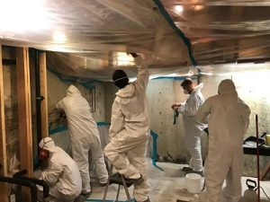 Cleaning Up A Mold Infestation